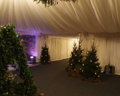 A winter wedding with Christmas decorations