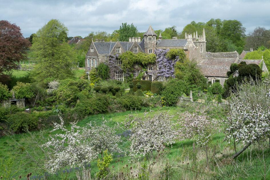 camerton court gardens somerset