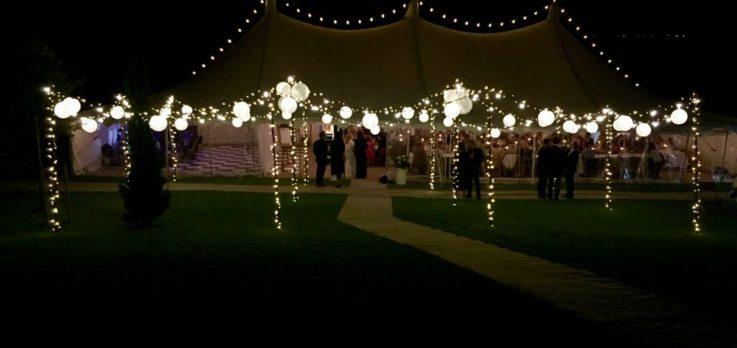 petal pole with lights