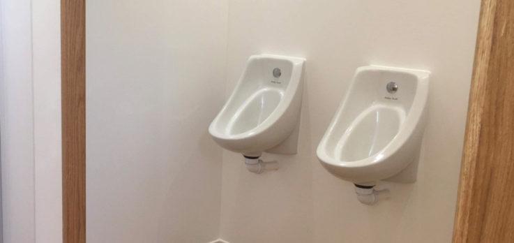 Luxury toilet urinal