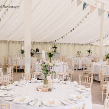 Traditional Style marquee with bunting A Tall Long Legged Bird'