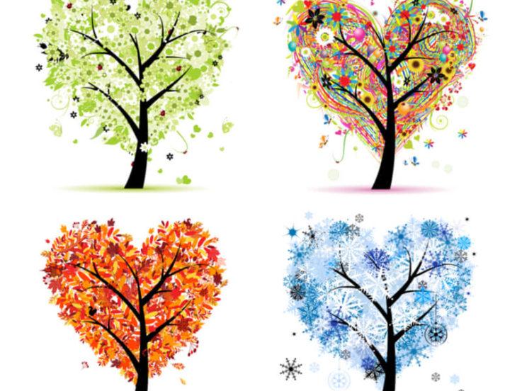 Wedding Planning by Seasons